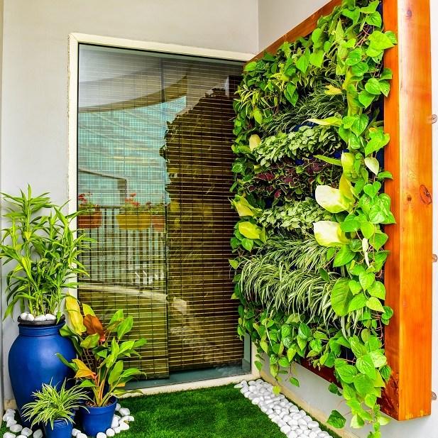 Vertical garden balcony