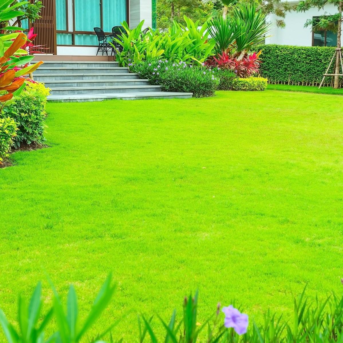 Landscaping for villas