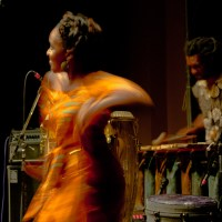 Music of the People by the People for the People - ZimFest 2014
