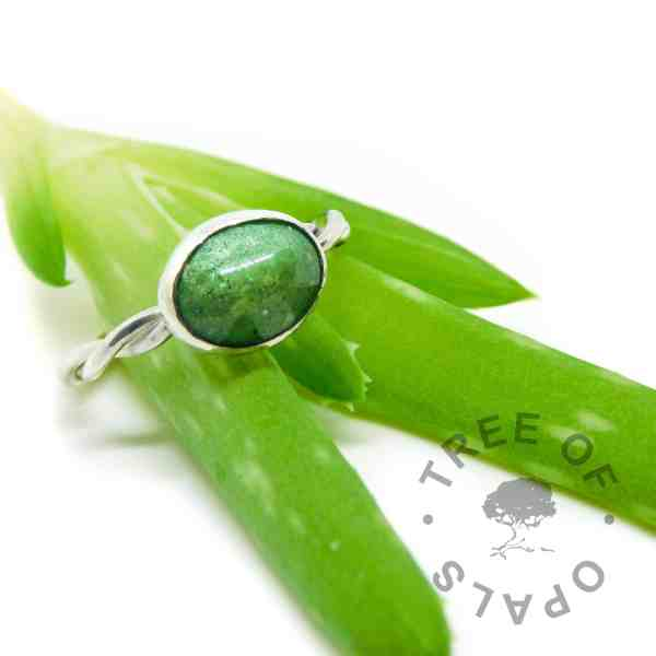 basilisk green sparkles ash ring and an aloe vera baby we've been potting up. Too beautiful not to photograph together!