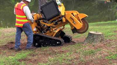 Stum removal and tree stump grinding