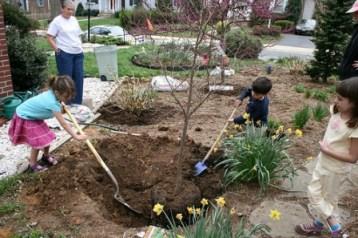 tree book for home gardeners