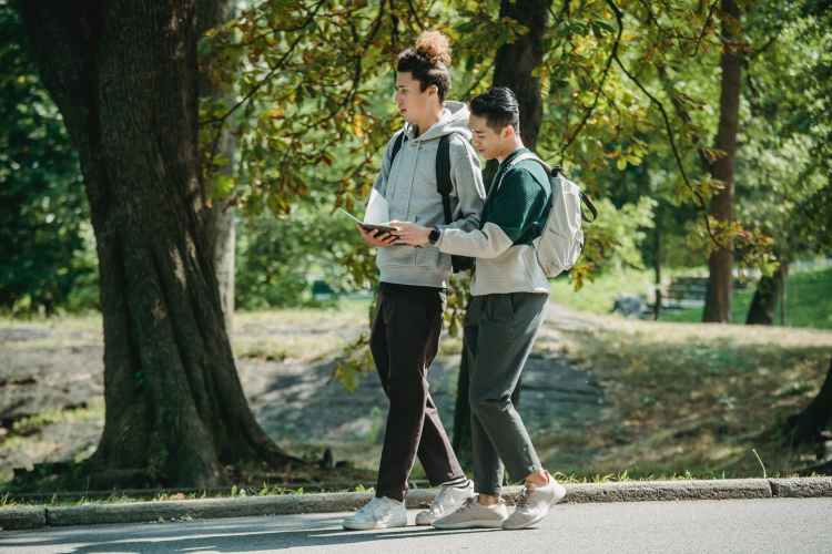 focused young multiethnic male students reading textbook in park before studies