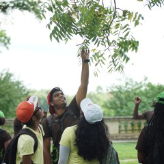 Watch Our Young Urban Forester Interns in Action!
