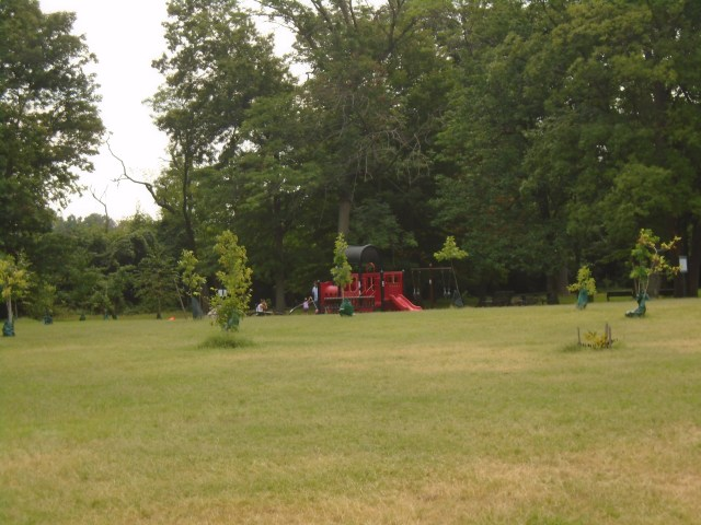 playground with young trees