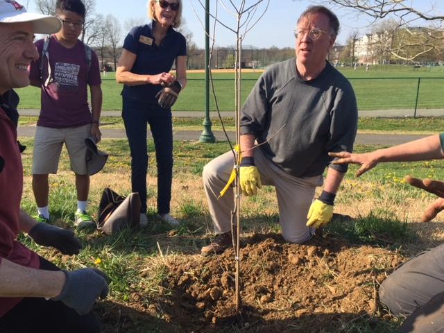 Volunteers Robert Ray, left, and Matt Feely meet at the planting hole. Photo by Tree Steward Jane Seward.
