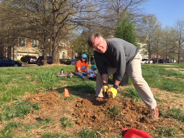 Volunteer Matt Feely starts a planting hole in Ben Brenman Park. Photo by Tree Steward Jane Seward.