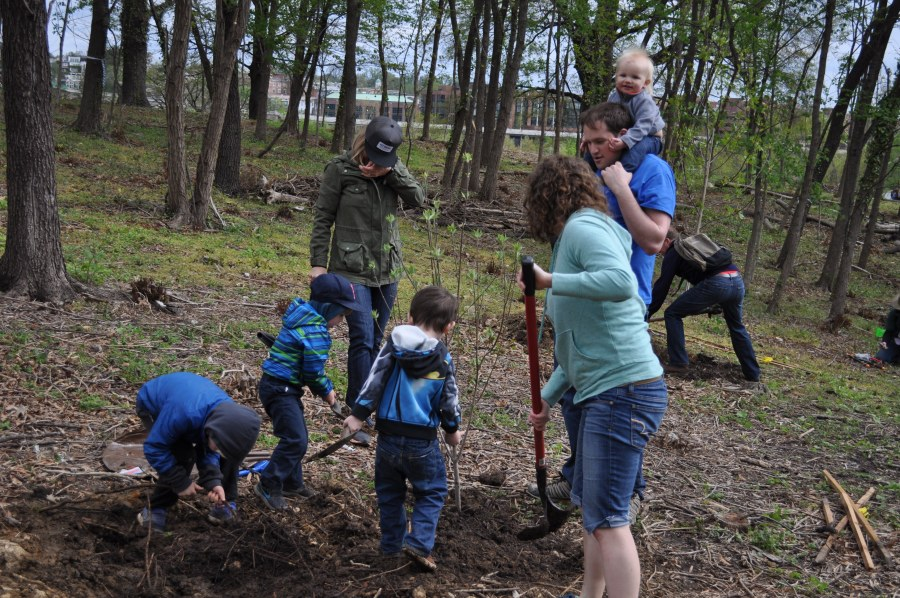 Families worked together to get the trees in the ground. Photo by Tree Steward Bill Anhut.