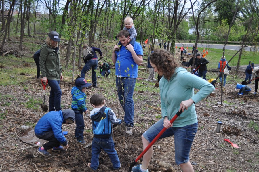 Families worked together to put trees in the ground. Photo by Tree Steward Bill Anhut.