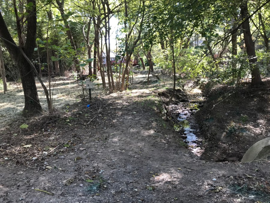 A ditch in Benjamin Banneker Park has barren banks that need trees Tree Steward trainees will be planting on Saturday, Nov. 10 and Wednesday, Nov. 14. Please help them restore this site. The ditch drains in to Four Mile Run and ultimately the Chesapeake Bay.