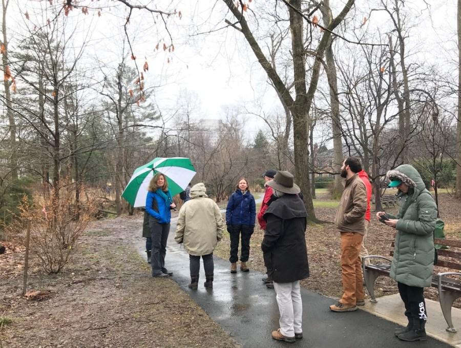 Winter tree ID walk