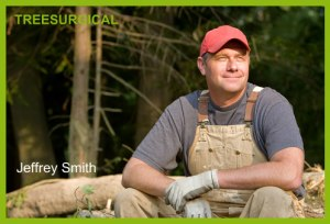 tree expert at treesurgical