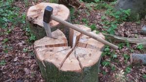 Wedge - treesurgical