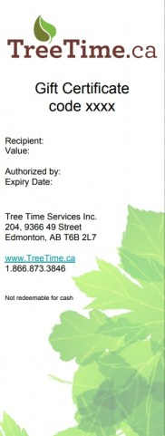 Example of our e-Gift Certificate