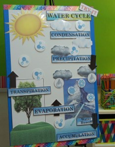 Active anchor charts also math and science bundle treetopsecret education rh