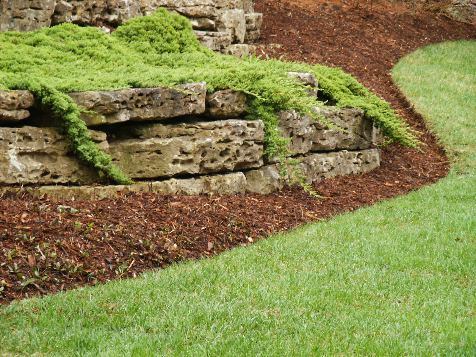 Retaining Walls And Outcroppings Treetops Landscape