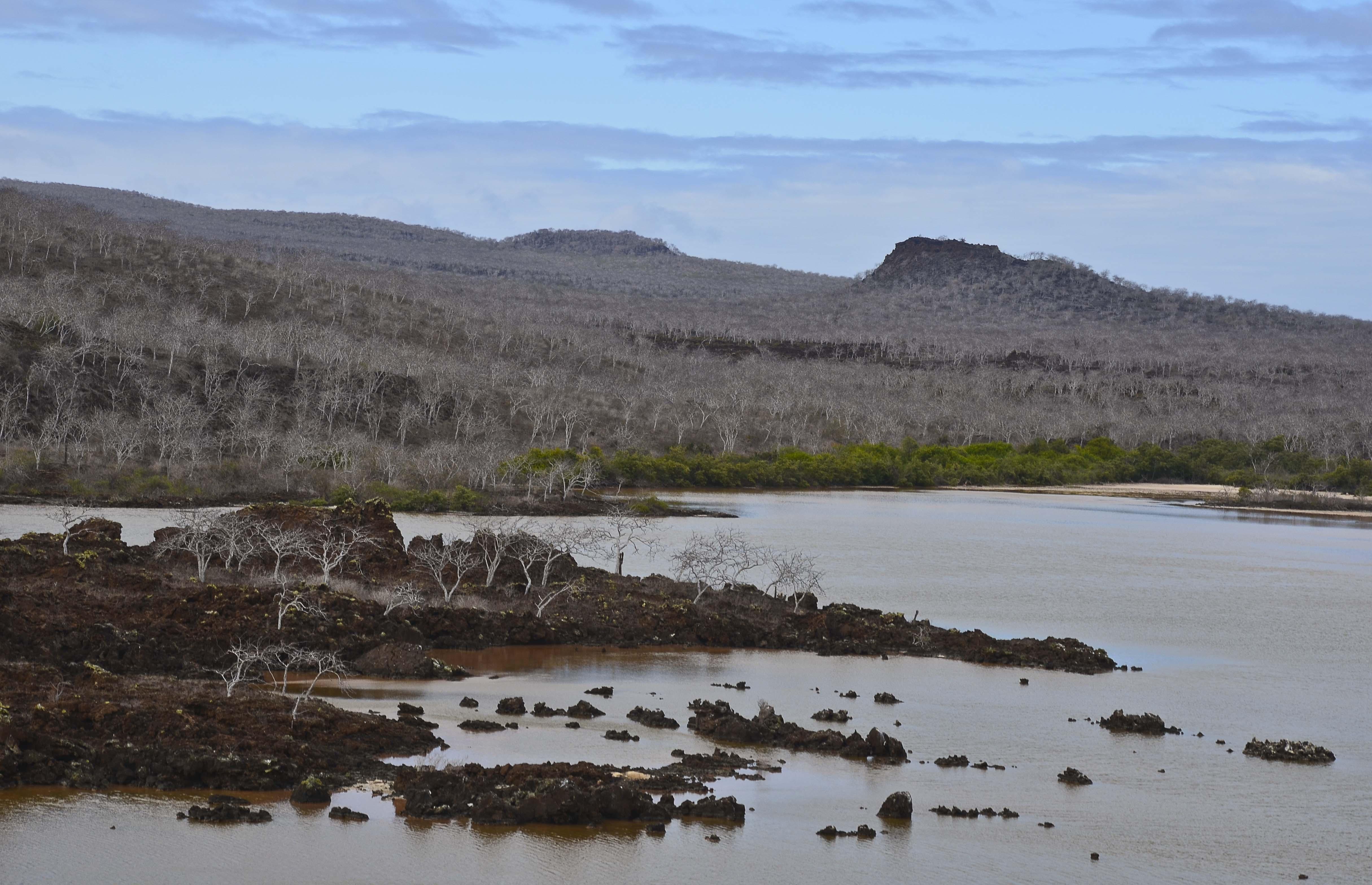 Galápagos – Floreana, Santa Cruz – Dragon Hill