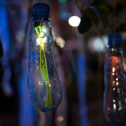 Avatar Tree - Miho's Bottles