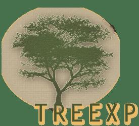 TreeXP