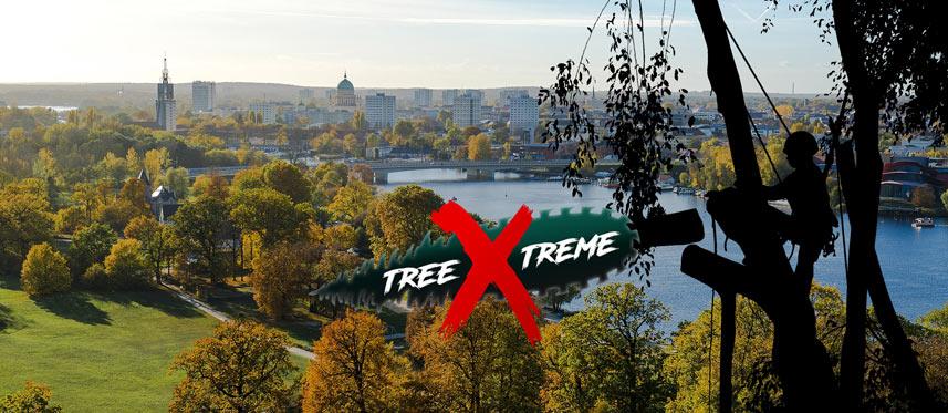 Baumpflege Potsdam   treeXtreme Baumkletterer Potsdam