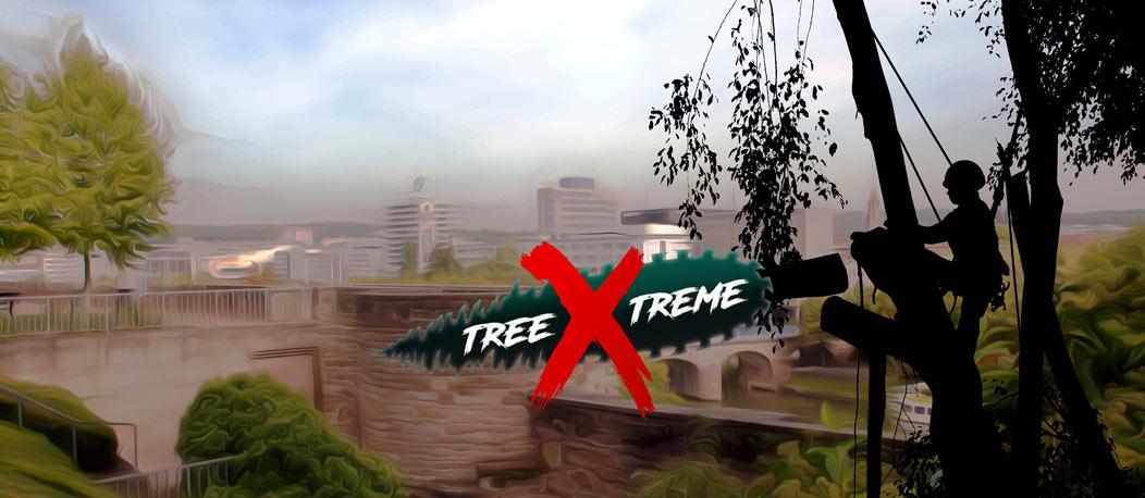 Baumpflege Saarbrücken | treeXtreme Baumkletterer Saarbrücken