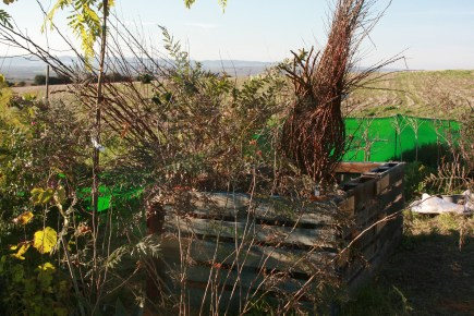 Temporary Nursery for large scale food forest planting, Suryalila, Southern Spain, 2016