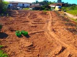 Garden Keyholes, Portugal, Herdade de Lage Implementation 2014