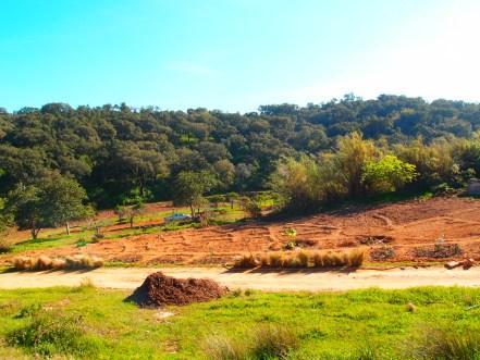 heredade-de-lage-zone-1-garden-from-above