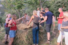 Compost pile from 2014 Spain PDC