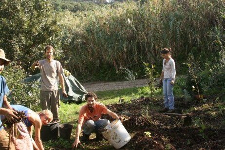 the crew mulching in the mediterranean garden