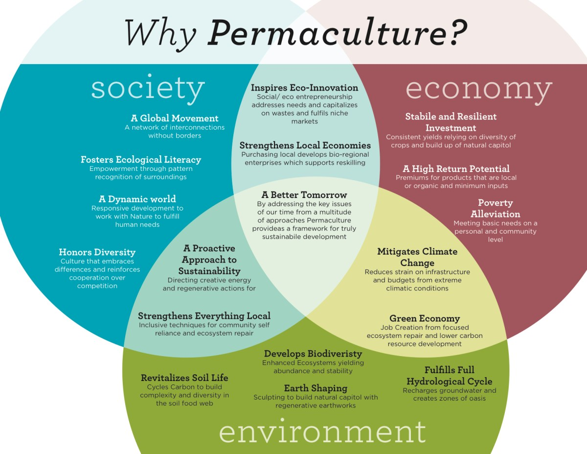 Why Permaculture?