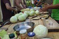 Fermentation hands on at Sekier, Slovakia 2015