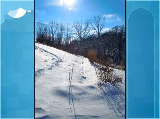 Permaculture Swale snow