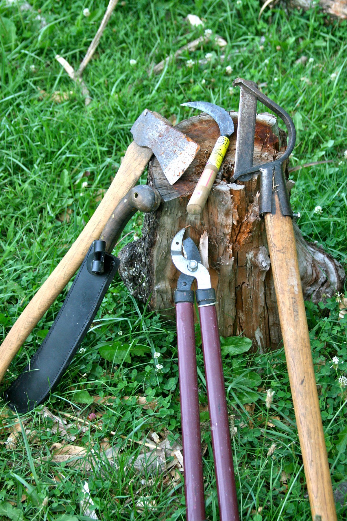 From left to right- felling ax, machete, pruners, rice knife, brush clearing ax tools for chop and drop