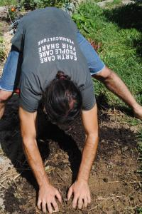 Author hand tilling for direct seeding in rich garden soil developed over years in suburban terrace beds, Ohio, USA 2013