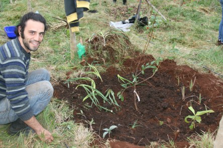 Author planting a tree and guild in Madeira Island, Portugal food forest course, 2015