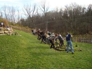 lots of shovels and picks in this class swale digging project, Cincinnati, OH 2009