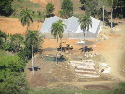 Thirteen banana circles in the middle of a farm implementation, Jamaica de Dios, Dominican Republic, 2012