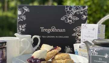 Tregothnan Luxury Cream Tea for Four