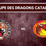 Groupe Dragons Catalans vs Castleford Tigers