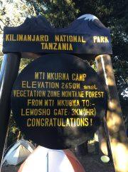 Mkubwa (Forest) Camp