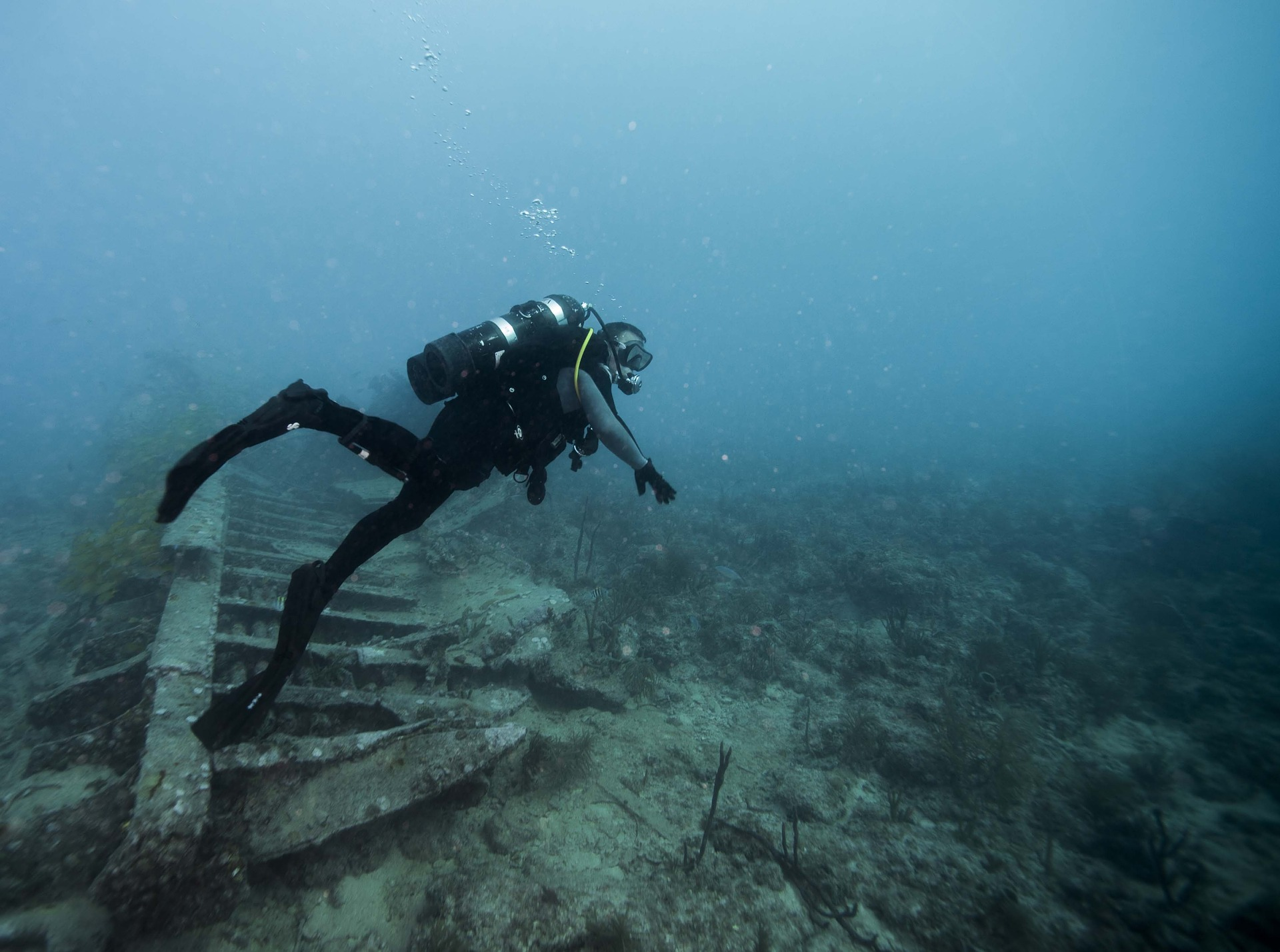 How To Get Your Scuba Diving Certification - trekbible