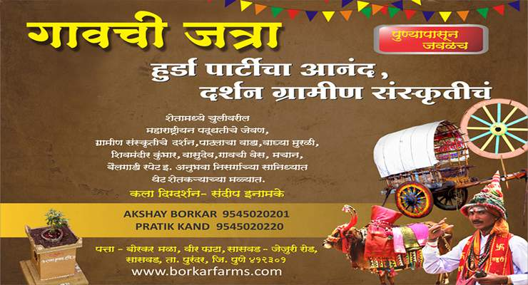 borkar farms hurda party near pune