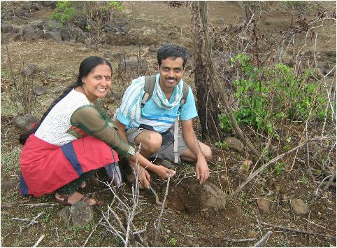 lohagad-tree-plantation