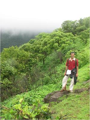 Rajgad Trek for Tree Plantation
