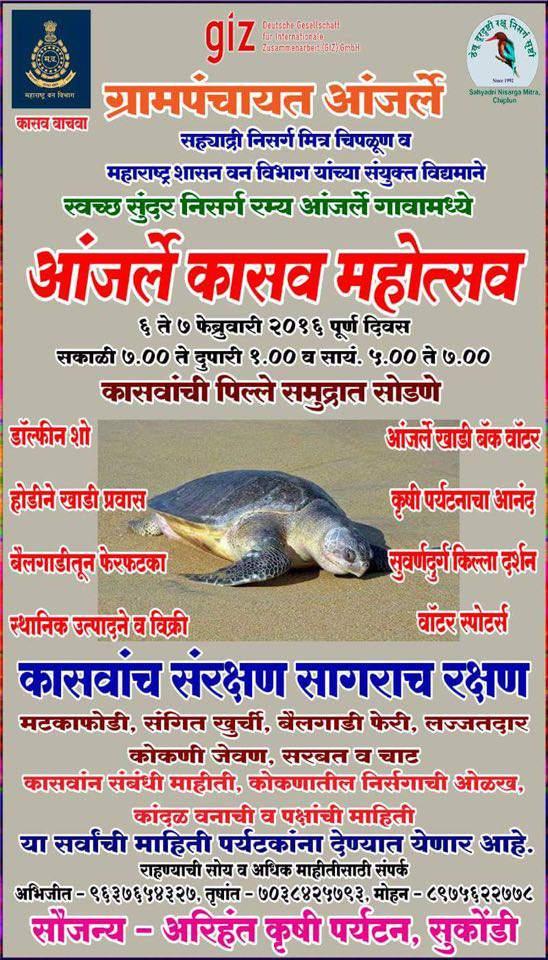 Velas Turtle Festival, Konkan, 2018 [Kasav Jatra कासव जत्रा]