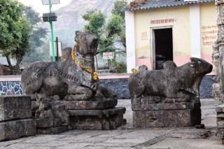 Amruteshwar Temple, nandi at temple rear