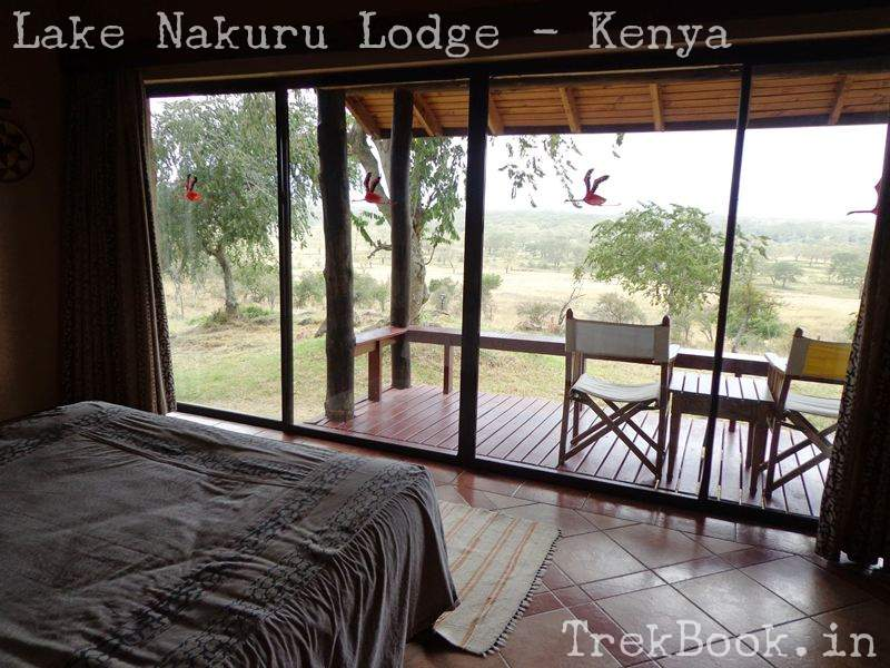 view from room lake nakuru lodge