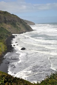 Muriwai Coast
