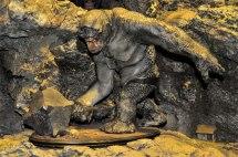 Weta Cave Wellington Trekin' Time